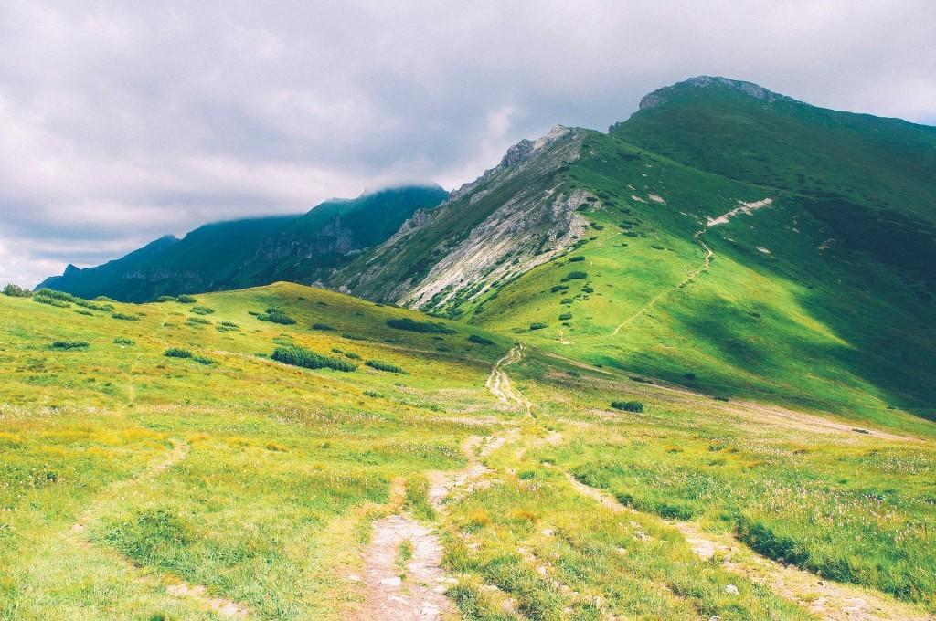 Student Enrollment Pathways - Hiking Trail